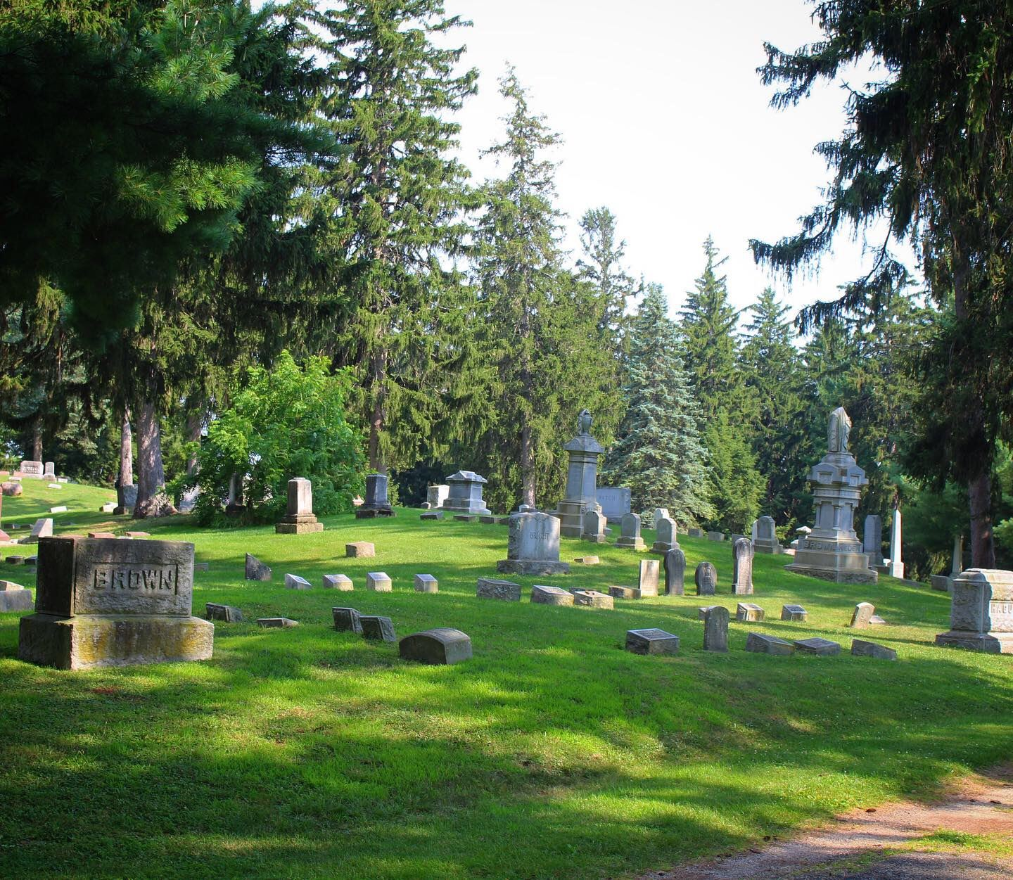 Wide view of Mount Evergreen Cemetery with old headstones, rolling hills, and tall trees