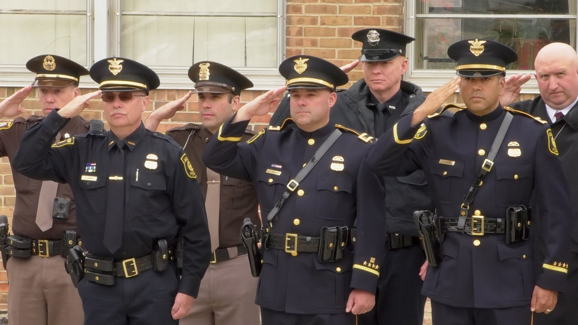 officers stand in a line and salute.