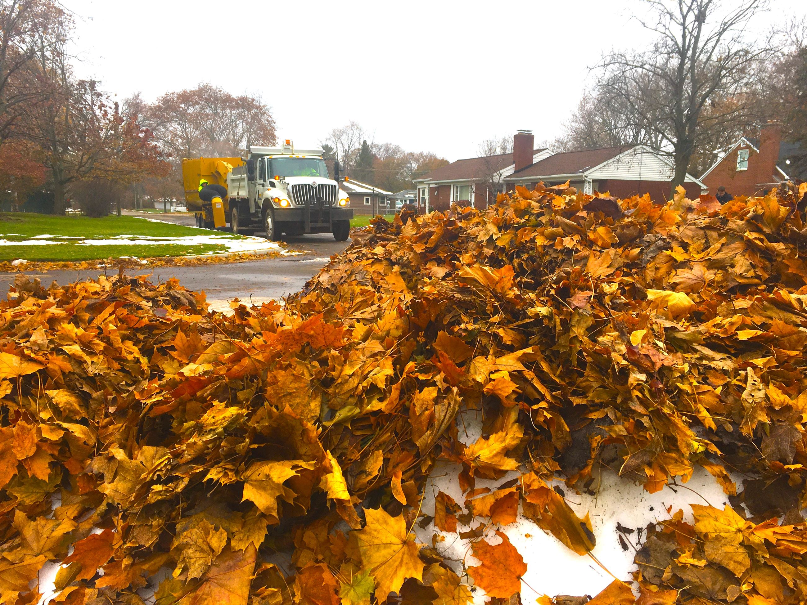 Leaf vacuum machine and leaf pile
